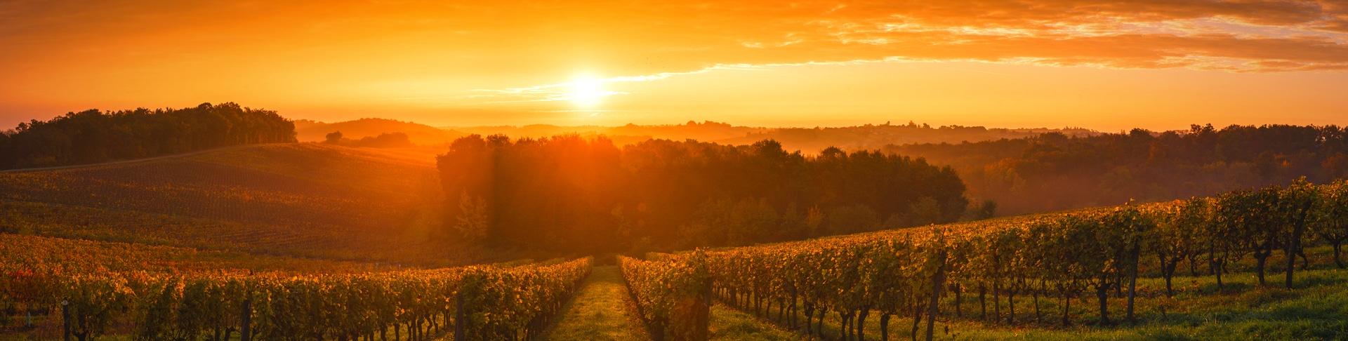 Bordeaux | Achat groupé de vins