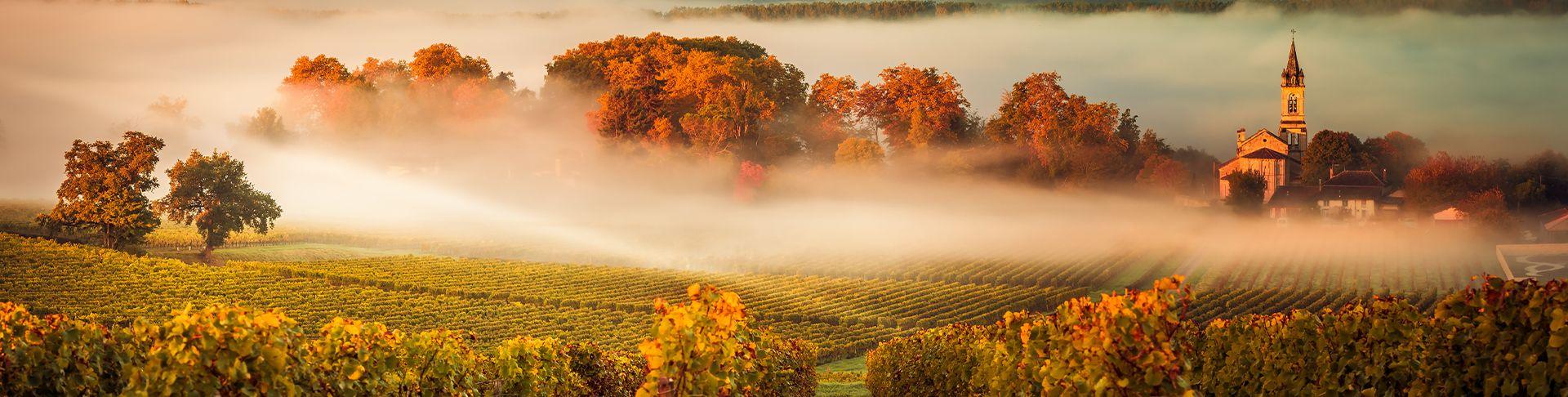 Vins De Bordeaux | Commandez En Ligne