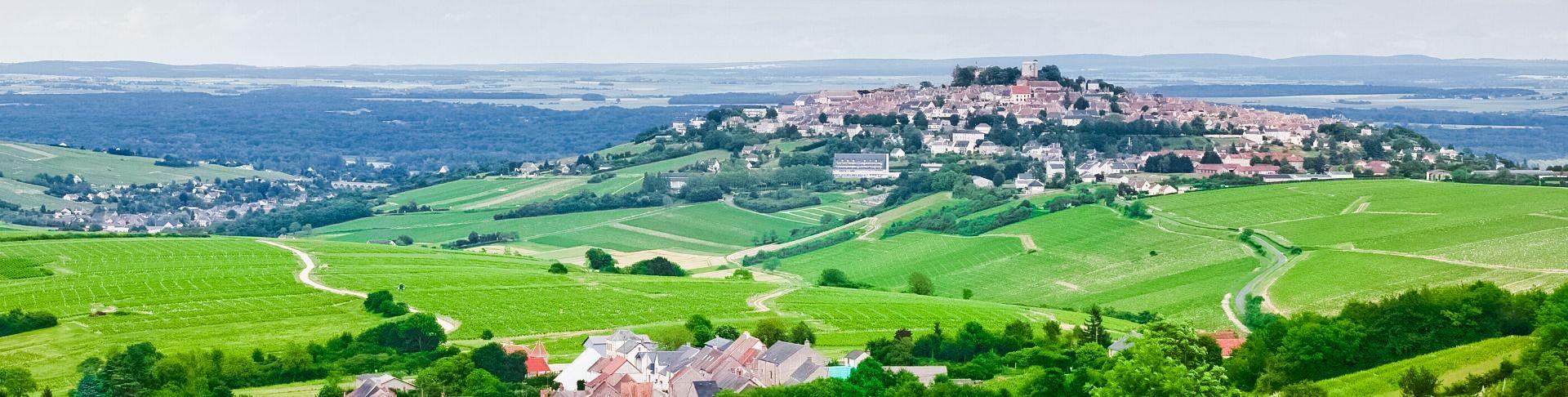 Vins De Loire | Commandez En Ligne