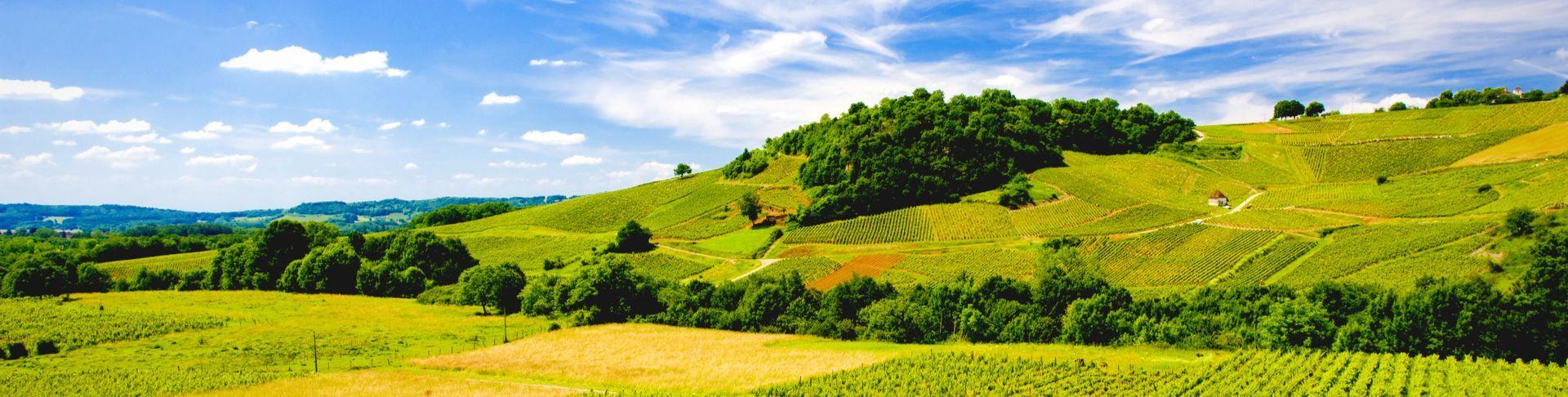 Savoie-Bugey-Jura