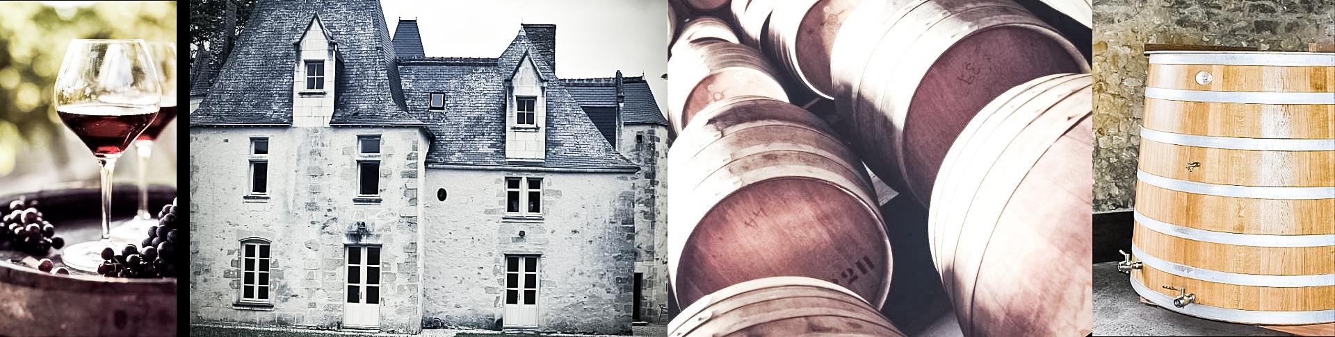 Château La Roche de Loire
