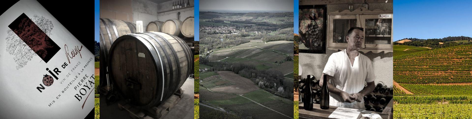 Domaine Pierre Boyat | Vente en Ligne | Vins Bio