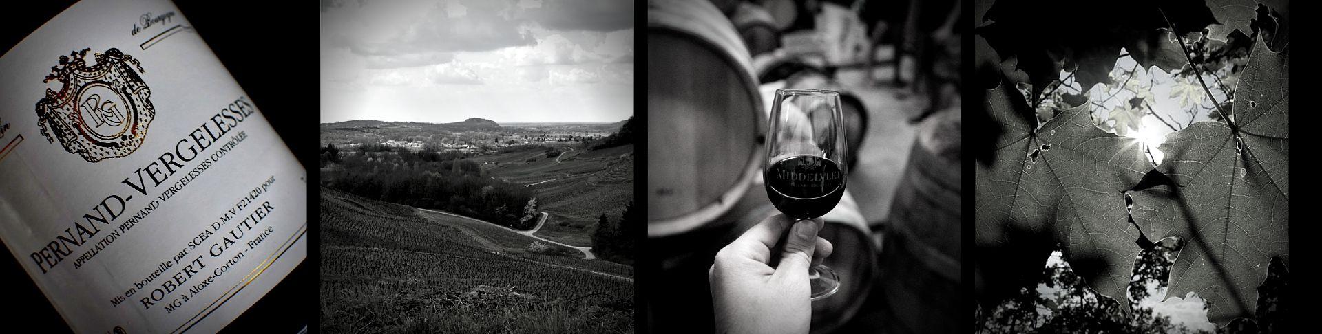 Domaine Robert Gautier Vente en Ligne | Vins Naturels