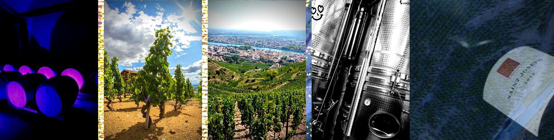 Domaine Rousset | Vente en Ligne | Vins Naturels